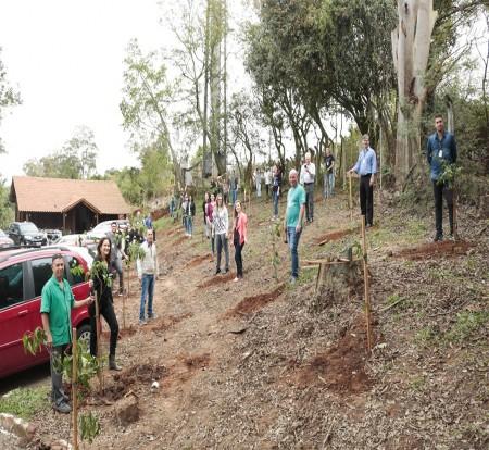 IBTeC faz mutirão de funcionários  para plantar 177 mudas de árvores  em seu terreno